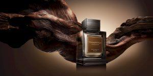 Essenza Eau de Parfum: BST 5 mùi hương quyến rũ dành cho nam giới