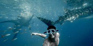 5 điểm đến lặn biển này sẽ khiến người theo dõi instagram của bạn phải ghen tị