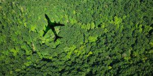Ecoxury: Hãy cứu lấy Trái đất bằng cách bạn du lịch