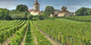 Masterclass: Khám phá vườn nho 5 đời tại Vignobles Bourceau, Pháp