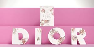 Dior hợp tác Daniel Arsham, ra mắt tác phẩm nghệ thuật phiên bản giới hạn