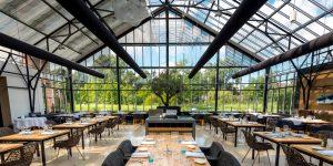 Ecoxury: Nông trại xanh giữa những khu rừng bê tông – xu hướng ẩm thực đang nở rộ