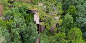 """Ngôi nhà """"làm tổ"""" giữa khu bảo tồn thiên nhiên Bushveld, Bắc Nam Phi"""