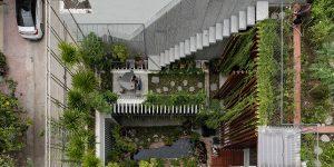Vườn Trên Mái: Khi nhà ở cũng là một khu vườn
